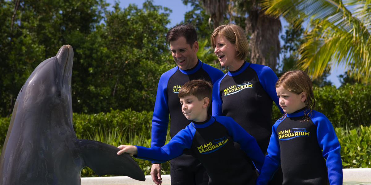 Family at a dolphin encounter at the aquarium